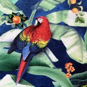 Casal Tropique 15-Marine Zoom